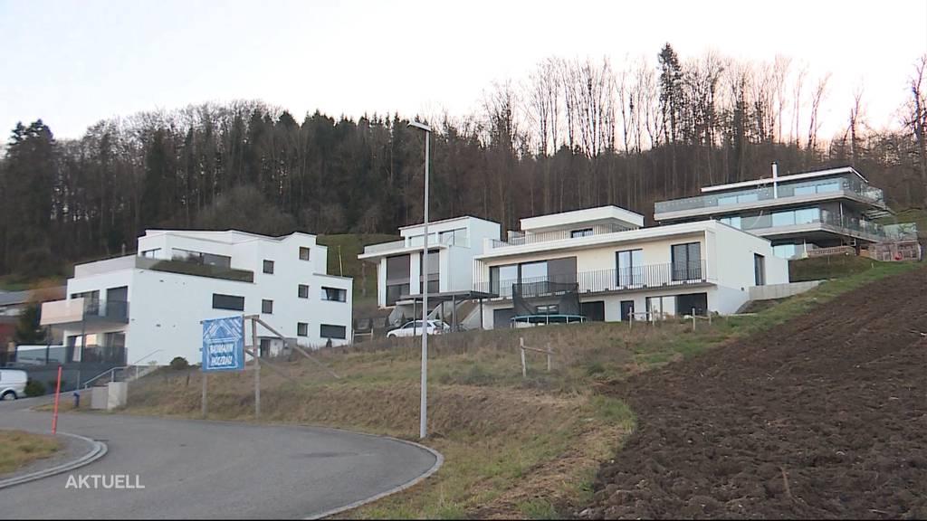 Widerstand gegen Terrassenhäuser am Hallwilersee