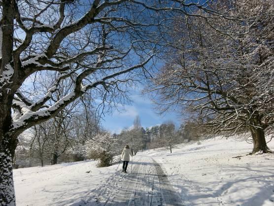 Winterfreuden am Blauen