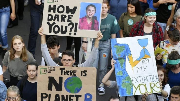Die Klimabewegung bringt die Grünen in die Zwickmühle. (Bild: Keystone)
