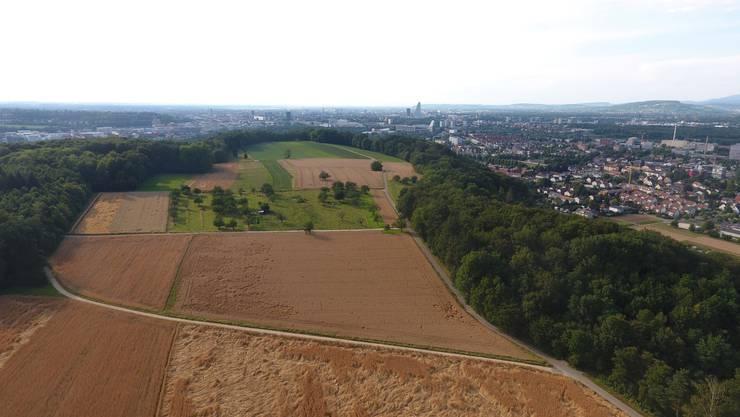 Luftaufnahme der Rütihard. Im Hintergrund die Stadt Basel und am rechten Bildrand Muttenz.