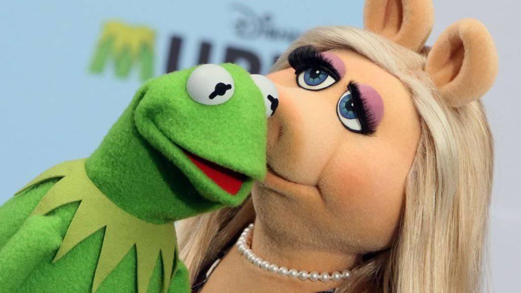 Da waren sie noch ein glückliches Paar: Mittlerweile soll sich Kermit mit einem anderen Schwein über die Trennung seiner Miss Piggy hinweggetröstet haben. (Archiv)