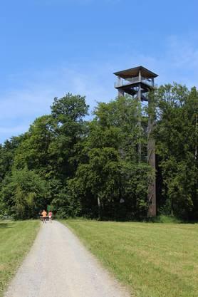 Vor fünf Jahren wurd er erstellt Der Aussichtsturm Altberg ist schon von weitem zu erkennen.