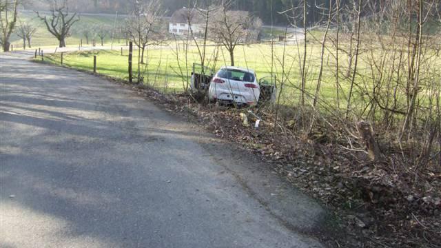Die Fahrt des 18-Jährigen Lenkers endete mit einem Totalschaden
