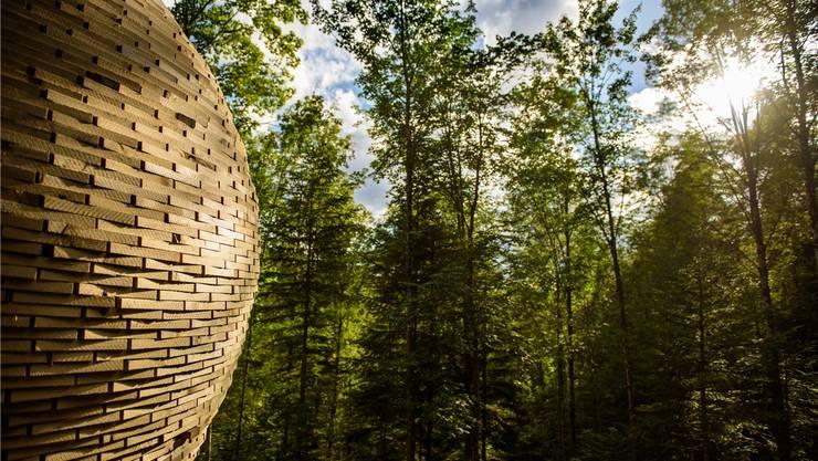 Eine der vielen Installationen entlang des Holzweges.
