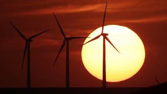 Windturbinen vor untergehender Sonne bei Beaumont, Kanada (Archiv)