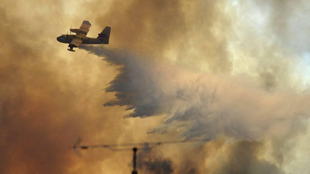 Löschflugzeug über einem Brandherd in Pedrogao Grande (Archiv)