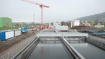 Auf dem zugekauften Landstück wurde in den vergangenen Monaten neben der bestehenden ARA eine komplett neue Reinigungsstrasse gebaut