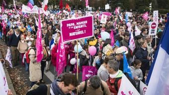 """Konservative Organisation """"Manif pour tous"""" rief zu Demo auf"""