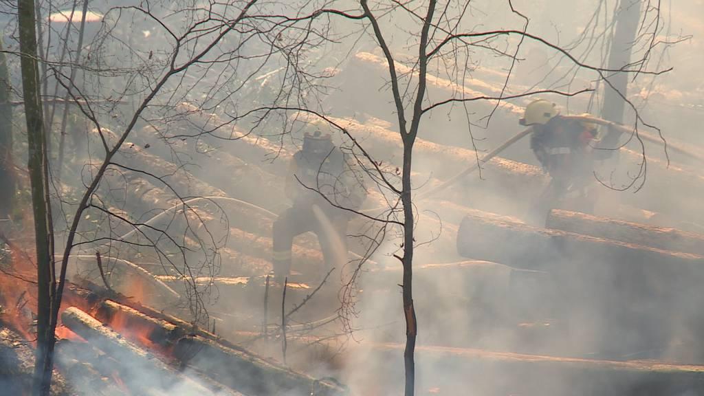 Ostschweiz: Waldbrände fordern Feuerwehr
