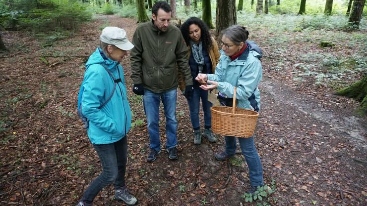 Der Verein Umweltplattform (UP) hatte zum Anlass «Food by Foot» eingeladen, einer Entdeckungstour in den Riedholzer Wald.