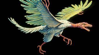 Geschuppte Füsse, zweibeiniger Gang: Das Erbe dieses Archaeopteryx trägt das Huhn in sich.