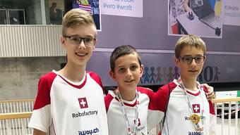 Das Team Robofactory mit (von links) Mika Schlup, Jesse Born und Julian von Hoff.
