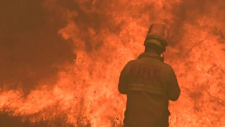 Im Kampf gegen die australischen Buschbrände sind am Donnerstag zwei Feuerwehrmänner bei einem Unfall ums Leben gekommen.