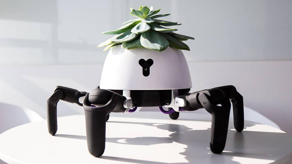 Hexa Roboter Upload 24