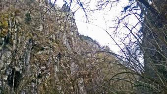Der Tote wurde im Albbtal in unwegsamem Gebiet gefunden.