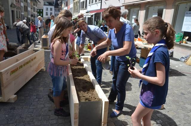 Pflanzblätz Altstadt