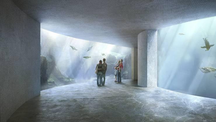 Könnte sich der Zolli vorstellen, das Ozeanium auf Baselbieter Boden zu bauen?