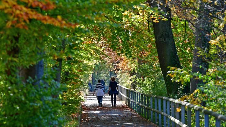 Die einen flanieren bei wunderbarem Herbstwetter in der Süfzger-Allee zwischen Olten und Winznau...