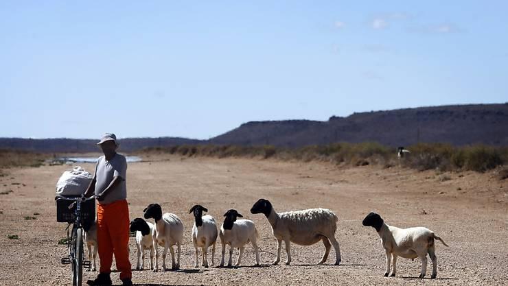 In vielen Teilen Afrikas wird die Jahresdurchschnittstemperatur bis 2070 laut Modellrechnungen auf 29 Grad Celsius steigen. (Symbolbild)