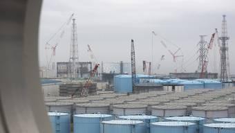 Dutzende Tanks mit radioaktivem Wasser stehen mittlerweile auf dem Gelände des AKW in Fukushima. Der Betreiber möchte einen Teil davon in Meer ablassen.