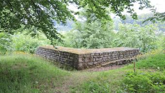 Auf der Ruine des römischen Wachturms beim Fahrgraben im Möhliner Forst soll eine Plattform errichtet werden.