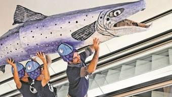 WWF-Aktivisten tragen einen grossen Lachs zum Tagungssaal der Basler Rhein-Ministerkonferenz. Dort übergaben sie eine Petition.