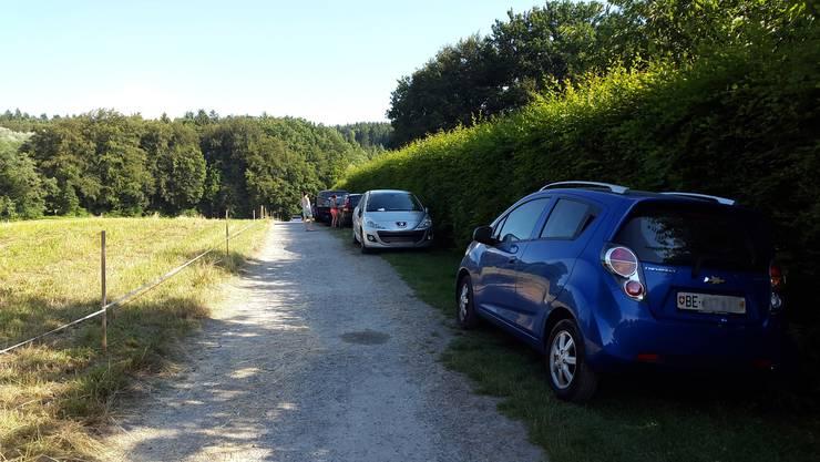 Parkierte Autos beim Burgäschisee