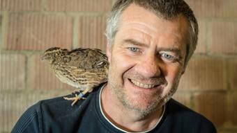 Für Beat Buchle bedeutet die Beschäftigung mit seinen 300 Wachteln Erholung. Und die Tiere – hier im Stall in Wallbach – danken es ihm mit ihrer unaufgeregten Art und ihren braungesprenkelten Eiern. Chris Iseli