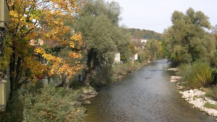 Flüsse wie die Birs (hier bei Laufen) brauchen Freiräume für Artenvielfalt und Hochwasserschutz.