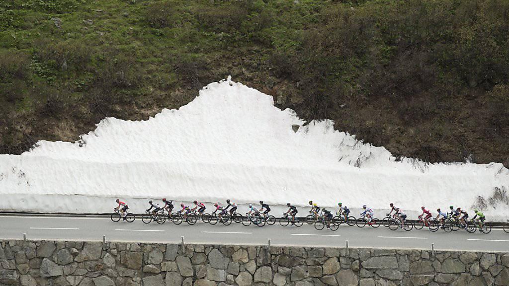 Das Feld an der Tour de Suisse 2016 auf dem Weg hinauf zum Furkapass