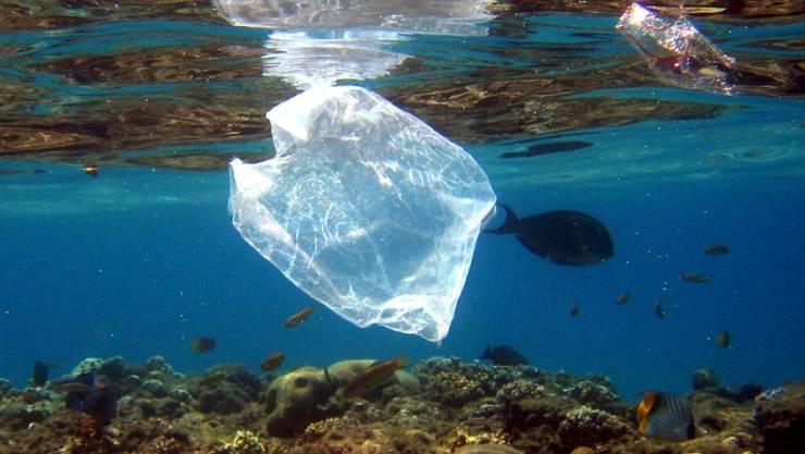 Obwohl Japan den zweitgrössten Plastikverbrauch weltweit hat nach den USA, hat das Land erst (gestern) am 1. Juli 2020 die Gratisabgabe von Plastik-Einkaufssäckchen verboten. Die Tüten sind so gut wie nicht abbaubar. (Archivbild)