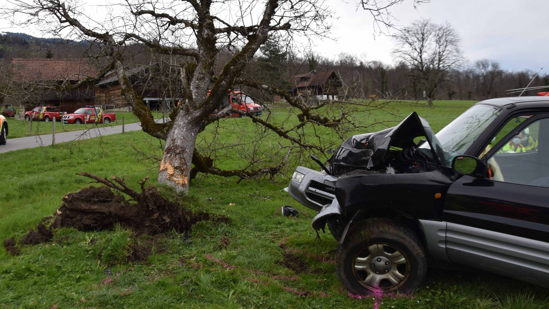Die beiden Insassen des Wagens wurden beim Selbstunfall schwer verletzt.