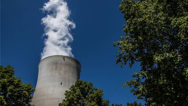 Wird der hoch radioaktive Abfall aus Atomkraftwerken künftig in Leibstadt verladen und dort für die Einlagerung in das geplante Tiefenlager umverpackt?