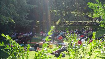 Yoga im idyllischen Park.
