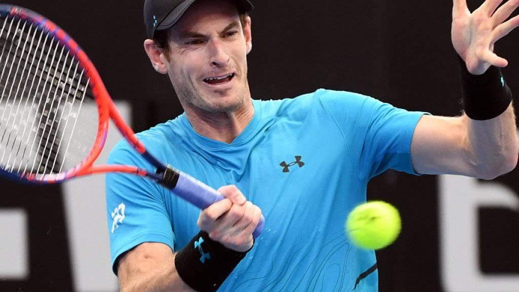 Andy Murray während des Ersrundenspiels in brisbane gegen den Australier James Duckworth