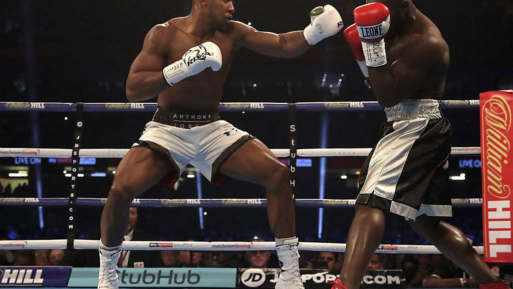 Anthony Joshua (links) besiegte Carlos Takam durch TKO in der 10. Runde