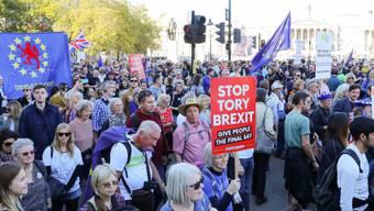 Es könnte sich laut Medienberichten um die grösste Demonstration seit 15 Jahren in der britischen Hauptstadt handeln.