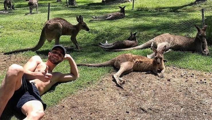 Der Sänger Luca Hänni - er ist der vorne links - hat am Sonntag ein bisschen mit Kängurus gechillt. Dabei hat er sich bestens in die Herde integriert. (Instagram)