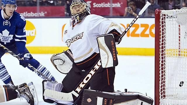 Jonas Hiller steht wieder im Tor der Ducks.