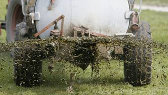 Ein Grossteil der Schweizer Landwirte düngt ihre Felder mit Gülle, also den Fäkalien von Tieren. (Archivbild)