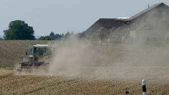 Wird den Bauern das Wasser wieder so knapp wie 2003?
