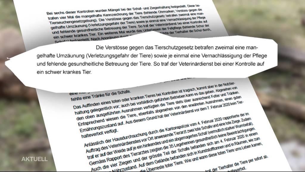 Regierungsrat nimmt in 3-seitigem Brief Stellung zu Oftringer Tierdrama