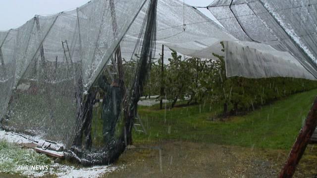Frost bringt Bauern ins Schwitzen