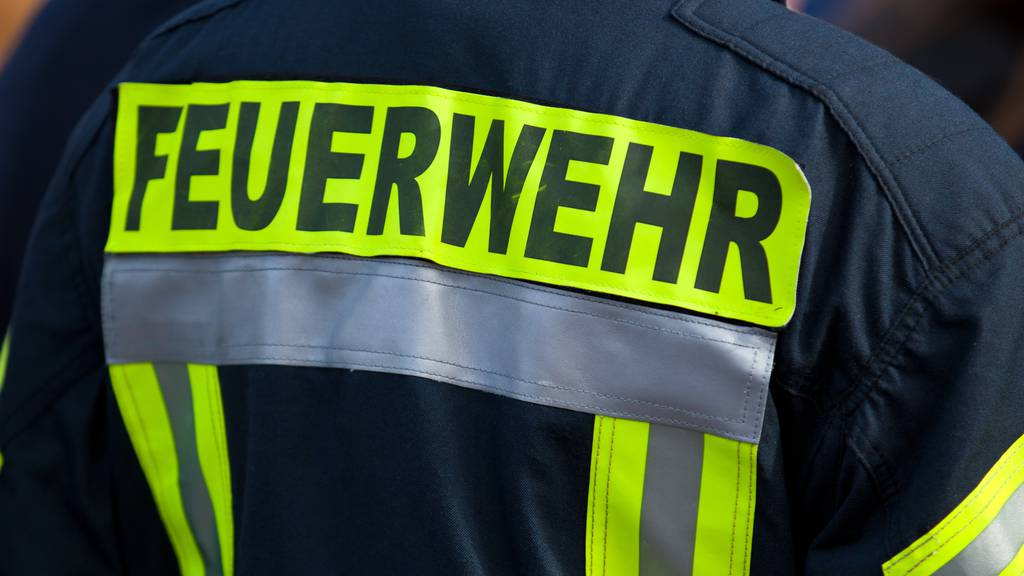 Vorarlberg: Stall abgebrannt - Pferde und Hühner gerettet