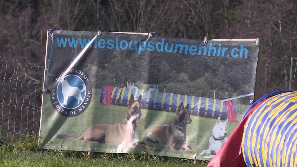 Das sagen Experten zur tödlichen Hundeattacke in Auboranges