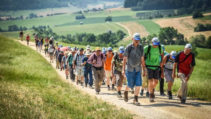 Die Leserwanderer beim Aufstieg in Frick