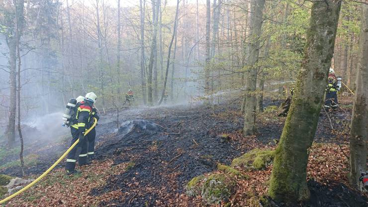 Die Feuerwehr Wettingen bei ihrem Einsatz.