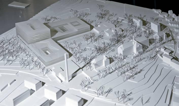 Das Modell des Bürgesptitals Solothurn