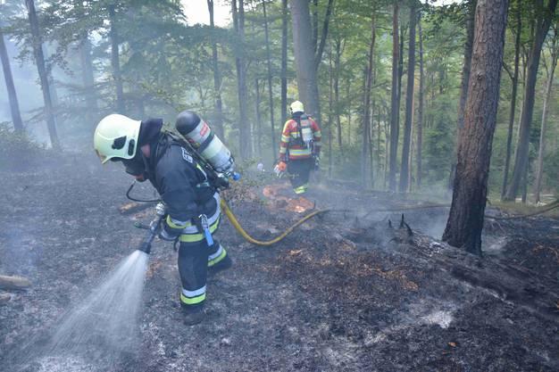 Das Feuer hatte sich auf einer Fläche von zirka 50x70 Meter ausgebreitet