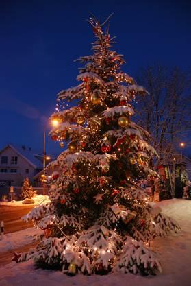 Der Baum der Gemeinde Oberwil-Lieli im ortsteil Lieli